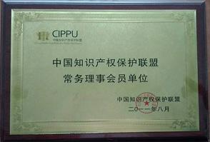 中国知识产权保护联盟常